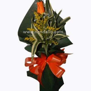 rosa unitaria