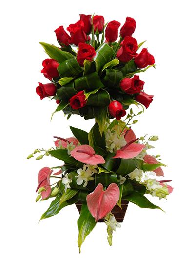 Topiario con anturio de rosas