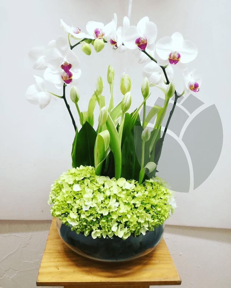 Arreglo Floral Con Base De Cristal Tulipanes Y Orquídeas