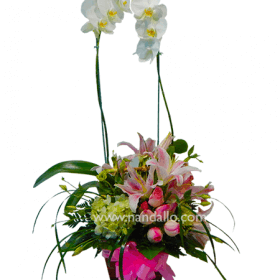 Arreglo floral con orquídeas