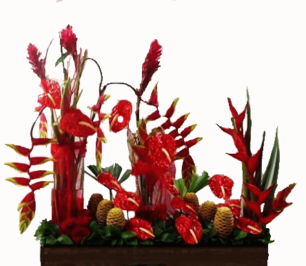 Arreglo floral tropical para lobby en base de madera