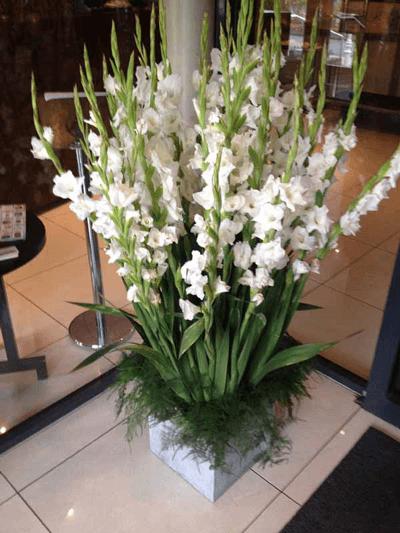 Arreglo floral para stand o evento