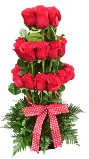 Arreglo de rosas de altura
