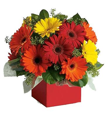 Arreglo floral con gerberas
